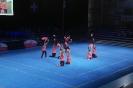 SM Team-Aerobic 2014_2